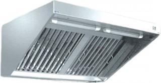 Зонт вытяжной ЗВЭ-800-2-П пристенный