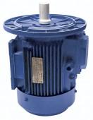 Двигатель для мясорубки МИМ-300